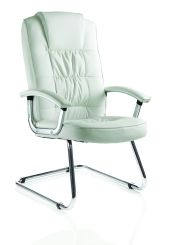 Moore Deluxe Visitor Cantilever Chair  Leather With Arms